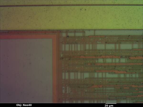 lne100tx_08_bf_neo40x_annotated.jpg