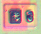 bjt_diode_1.png